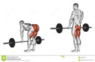 high testosterone booster picture 13
