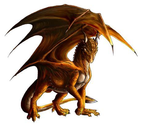 dragon picture 7
