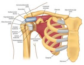 shoulder chronic joint pain relief picture 6