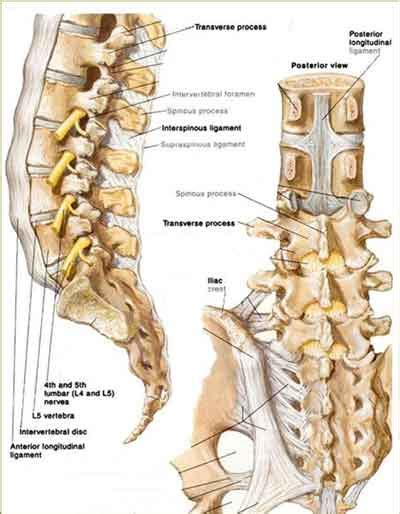 car accident and si joint pain picture 7