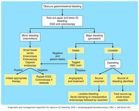 pathophysiology upper gastrointestinal bleeding picture 5