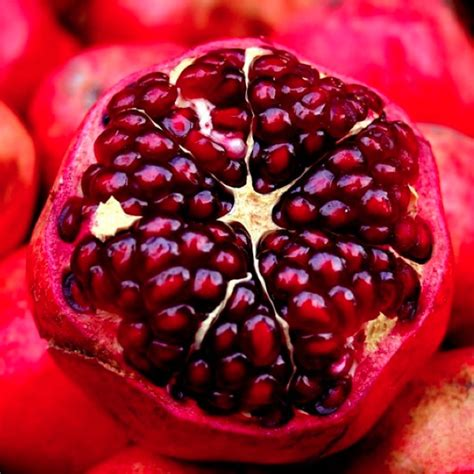 pomegranate and bladder control picture 2