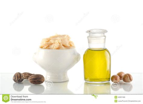 argan tree nut picture 7