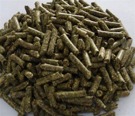 alfalfa pellets picture 9
