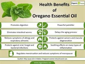 can taking oil of oregano help with epididymitis picture 3