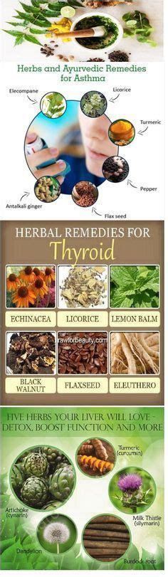 mx 3 herbal medicine picture 9