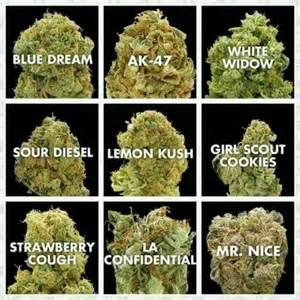 how to order marijuana edibles online picture 2