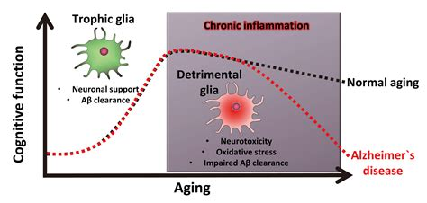 aging problem research picture 5