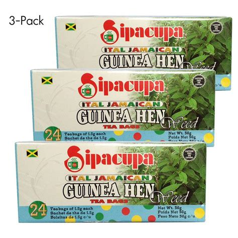 guinea hen tea and weight loss where to buy picture 1
