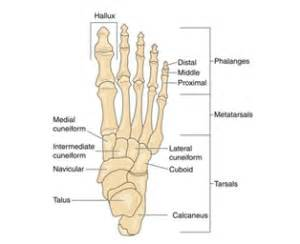 injury to mtp joint of fifth metatarsal picture 5
