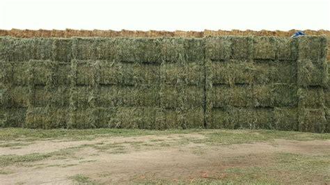 alfalfa bale prices picture 19