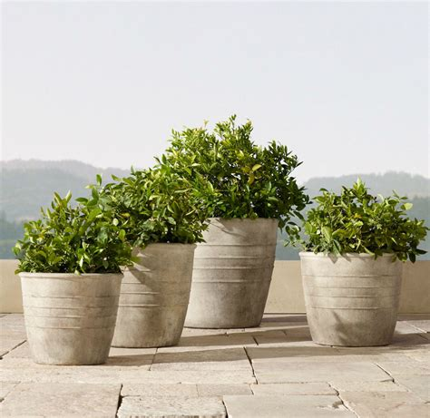 planters picture 2