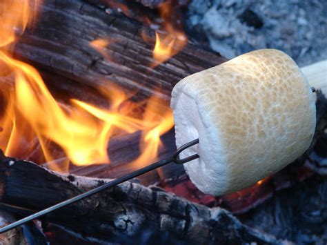 campfire marshmallows picture 1
