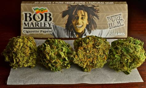 bob marley smoke two bongs picture 1