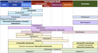 bacterial coverage and bactrim picture 10