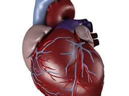 what causes sudden drop in cholesterol picture 6