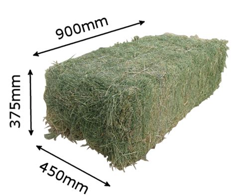 3 string alfalfa bales for wholesale in texas picture 13