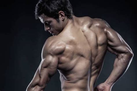 gaining lean muscle picture 7