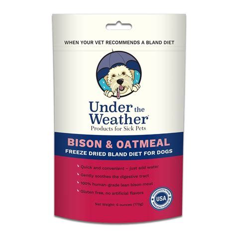canine bland diet picture 6