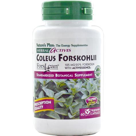 coleus forskohlii thyroid picture 3