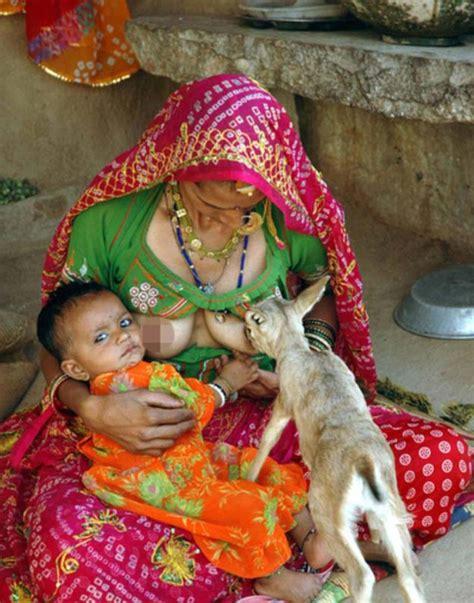 woman breast feeds deer picture 2