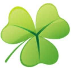 clover picture 3