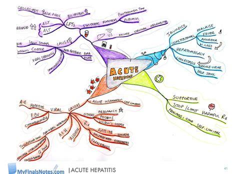alat hormone diet picture 15