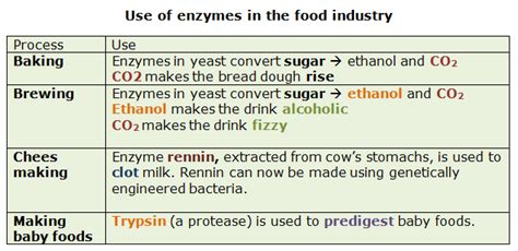 foods that contain enzymes and amino acids for picture 3