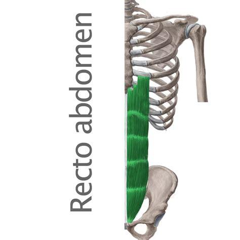 vasculis colon pain picture 15
