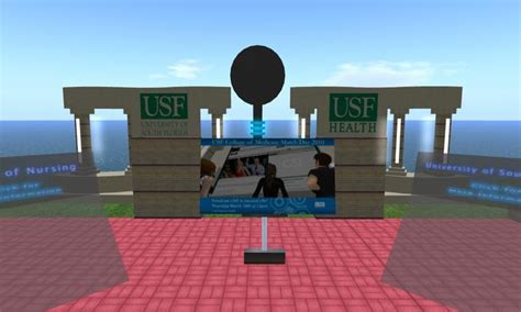 college of public health university of south florida picture 6