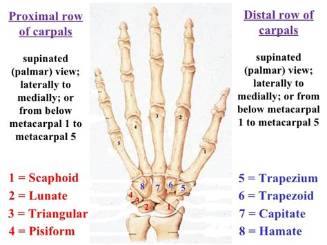 finger joint pain picture 6