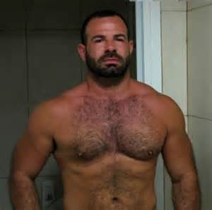 bears men muscle chest hairy picture 2