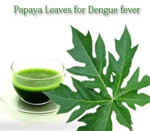does papaya leaves helps for joint pains picture 6