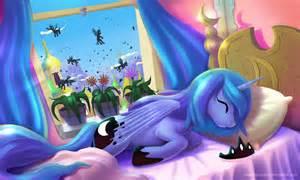 pony sleeping picture 13