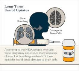 herbal drugs that produce opiate effects picture 6