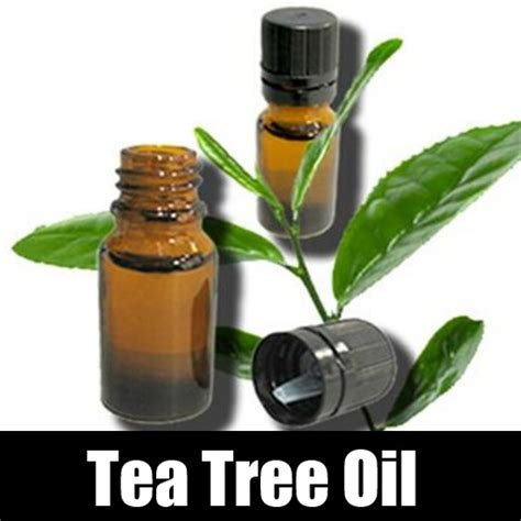 yeast infection tea tree treatment picture 13