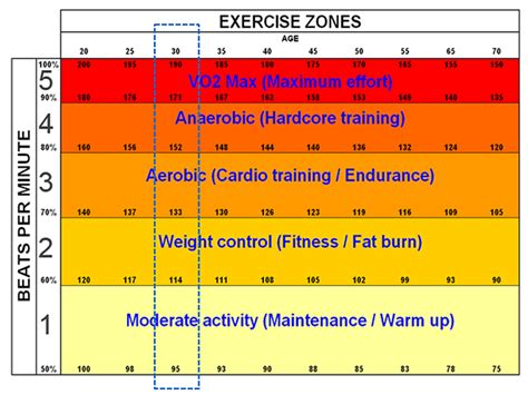 How can i find my fat burning zone picture 8
