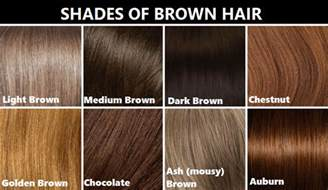 shades of brown hair color picture 3