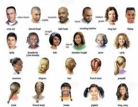 all kinds of hair styles picture 1