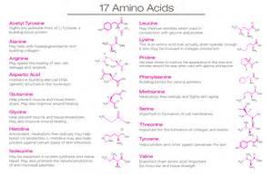 aging amino acids picture 2