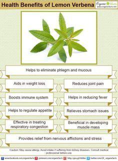 acai benefits nerves picture 18