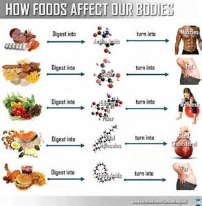 foods for digestion picture 15