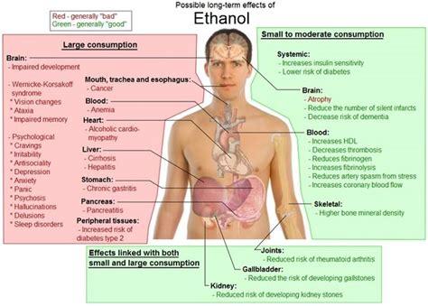 effect of mestrogen in d body picture 4