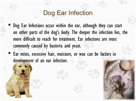 yeast infection of inner ear picture 6
