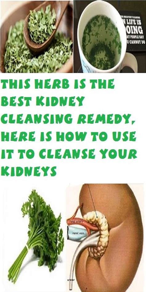advocare cleanse and kidney stones picture 10