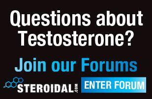 questions about testosterone picture 1