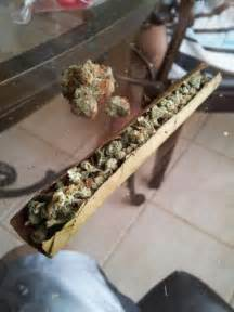 best blunts to smoke picture 7
