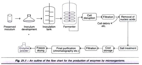 improvement of oil production using microbial enzymes picture 1