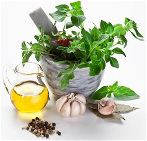 medical herbal treatments picture 6