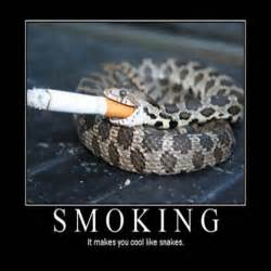 quit smoking picture 6